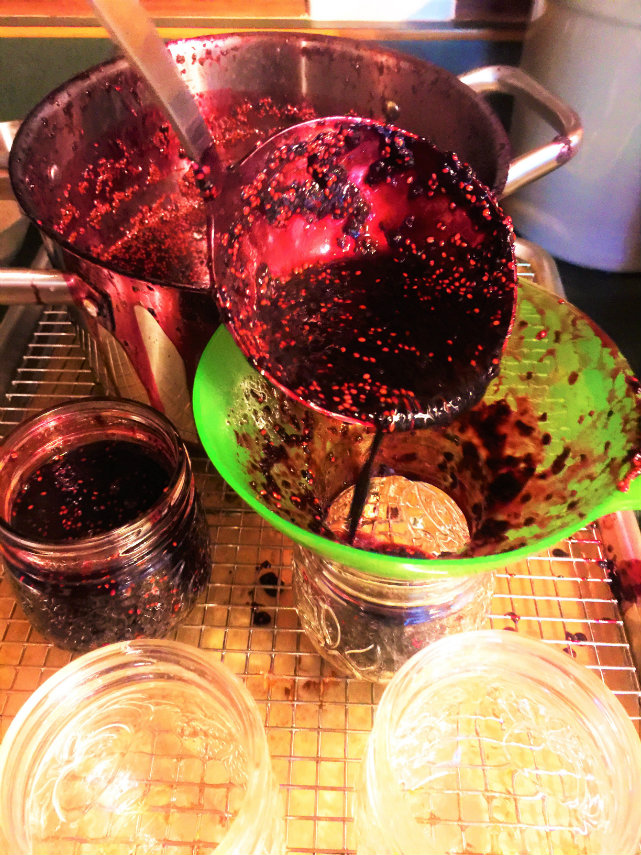 Jarring up mulberry jam at the Old Caledonian Bed & Breakfast is messy business, but worth it!